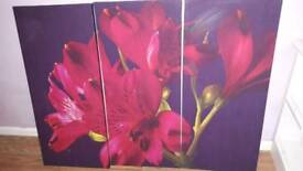 Canvas ×3