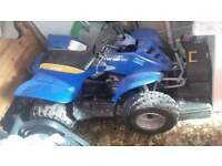 90cc quad bike , E-TON VIPER 90