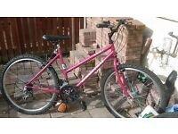 lady's bike in good condition