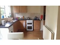Spacious 5 bed house in central Cambridge (can be rented separately)