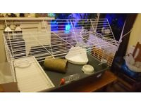 Guinea Pig Cage in Excelant Condition with ooodles of stuff ! (DN1 2BA Area)