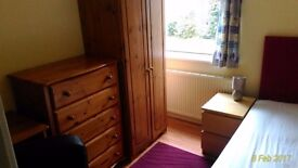 LOVELY SINGLE ROOM IN SHOLING, AVAILABLE NOW