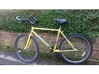 Saracen mens bike