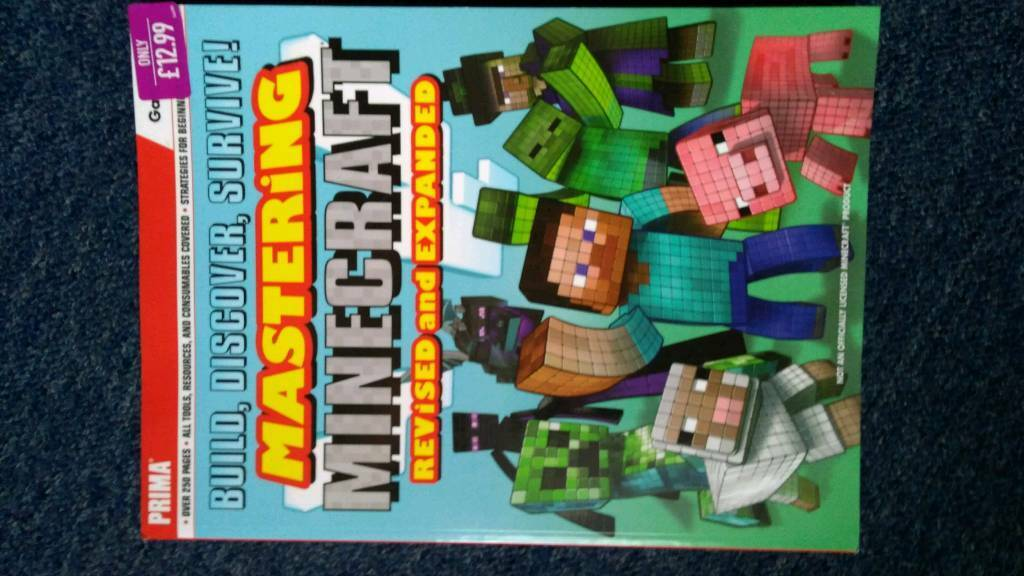 Mastering Minecraft guide book | in Leytonstone, London | Gumtree