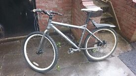 mountain bike carrea