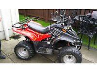 quad Dinili t-rex 100cc