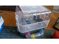Small animal cage with tubes/furniture