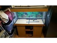 Jewel Rio 300 fish tank and cabinet