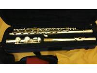 Barely used flute in excellent condition