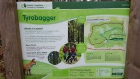 Forest run or walk with overweight