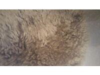 Beautiful soft fur liner