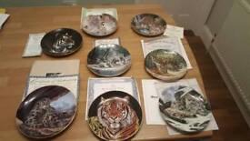 Big Cat plates