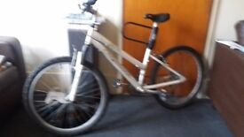 Ridgeback bike female 10 gears 6061 Alumminium frame desting im asking £185