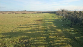 Building plot in Caithness with option for paddock