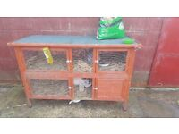 Rabbits x2 females with double hutch and lots of food