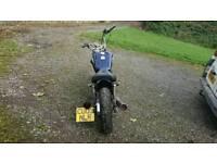 Suzuki marauder 125 bobber