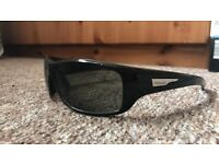 Men's timberland sunglasses