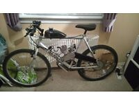 Mountain bike with 80cc 2 stroke engine