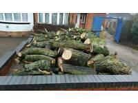 Cheap logs