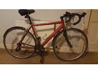 Revolution Continental Racing Bike, 56cm frame: great commuting/leisure road bike