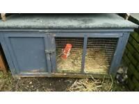 Rabbit hutches and mini lops for sale