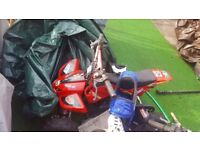 BARGAIN Mini motor and quad bike