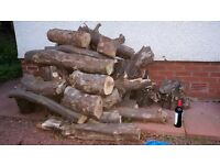 Wooden logs - ideal for wood burners