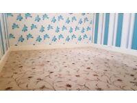 Bedroom / Living Room Carpet 4m by 3m