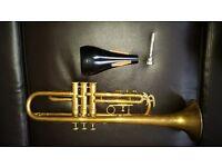 Brass trumpet y1258