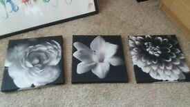 three small canvas pictures