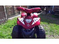 apachi quad bike