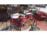 26x16 Premier Artist Maple Bass drum