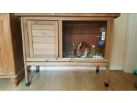 Rabbit hutch / small animal hutch
