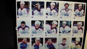 Edmonton Oilers Hockey cards Team