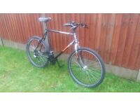 Giant Mountain Bike. Bargain £65.