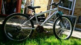 "24"" MuddyFox Mountain bike"