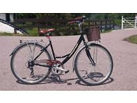 Viking Prelude Women's Bicycle 19""