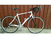 54 cm pinnacle road bike