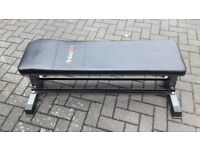 BODYMAX CF302 FLAT WEIGHTS BENCH