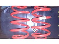 T4 transporter lowering springs