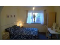 FANTASTIC DOUBLE ROOM NEAR MILE END - MOMENTS FROM TUBE - ALL BILLS INCLUDED - MUST SEE 160pw