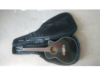12 String Electro-Acoustic Guitar w/ Case & Stand