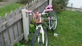 Girls custom mountain bike