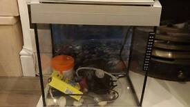 Fish tank and filter/pump with a few accessories