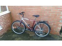 Very good condition adult bike with extras. I can deliver it