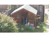 children's play house come shed