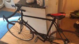 Raleigh Reynolds 501 bike
