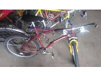 Gazelle Impulse Mountain bike