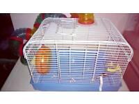 Dwarf hamster cage