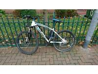 Electric mountain bike 36v